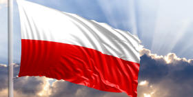 Poland Insolvency Report