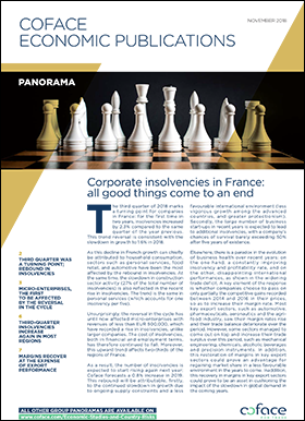 Corporate insolvencies in France